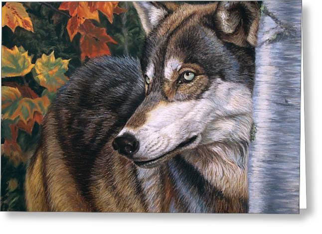 Wolf Pastels Greeting Cards - Autumn Eyes Greeting Card by Deb LaFogg-Docherty