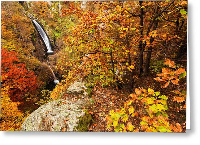 Waterfall Greeting Cards - Autumn falls Greeting Card by Evgeni Dinev
