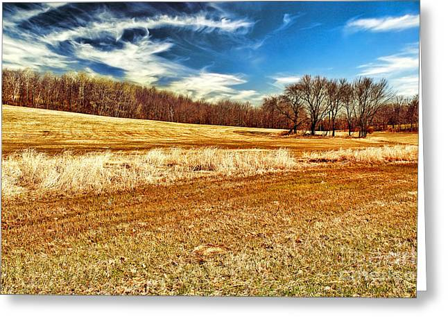 Southwick Greeting Cards - Autumn Field Greeting Card by HD Connelly