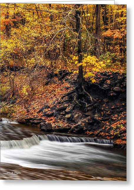 Ithaca Greeting Cards - Autumn Flow Greeting Card by Mark Papke