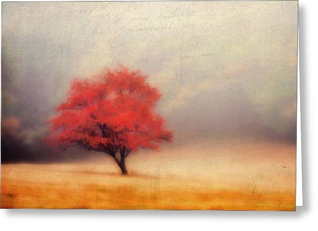 Autumn Fog Greeting Card by Darren Fisher