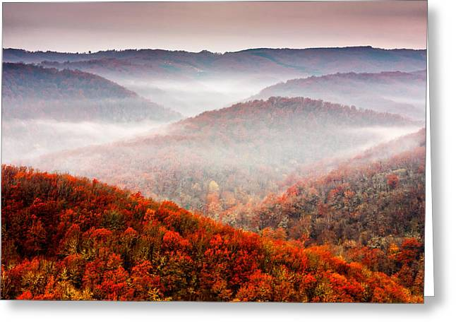 Meander Greeting Cards - Autumn Fogs Greeting Card by Evgeni Dinev