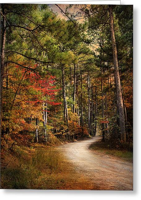 Autumn Scenes Greeting Cards - Autumn Forest 2 Greeting Card by Jai Johnson