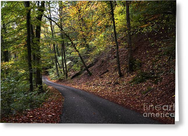 Metal Sheet Greeting Cards - Autumn Forest Greeting Card by Bruno Santoro