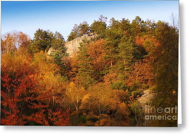 Autumn Scenes Greeting Cards - Autumn Forever Greeting Card by Lutz Baar