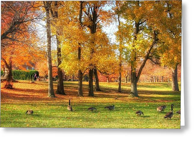 Fall Grass Greeting Cards - Autumn Geese  Greeting Card by John Loreaux