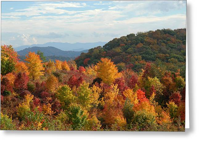 Red And Gold Leaves Greeting Cards - Autumn Glory Greeting Card by Alan Lenk
