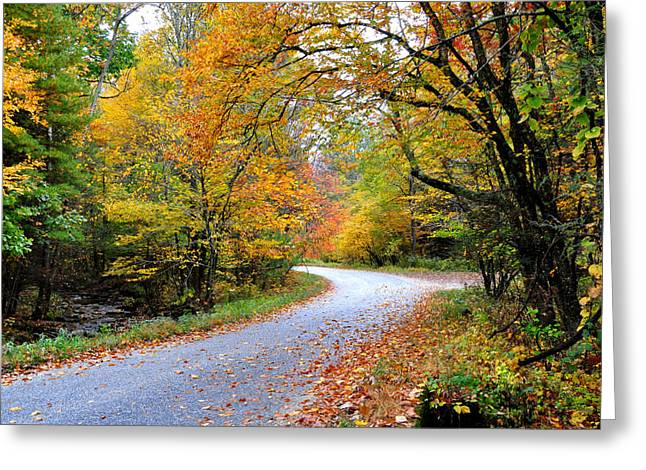 Autum Greeting Cards - Autumn Glory Greeting Card by Todd Hostetter