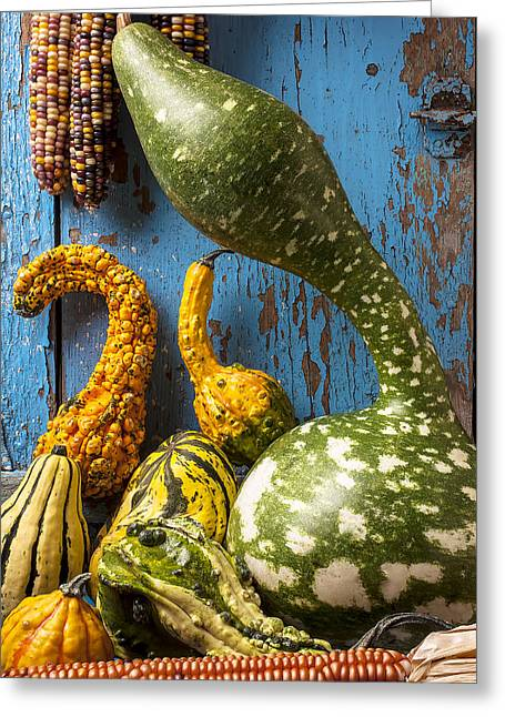 Gourds Greeting Cards - Autumn gourds Greeting Card by Garry Gay