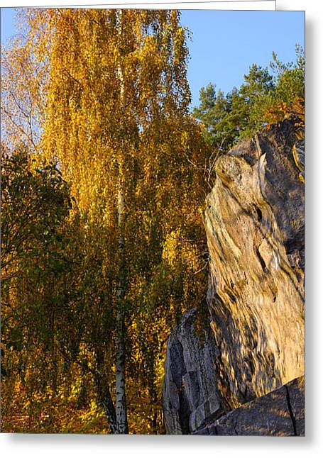 Autumn Scenes Greeting Cards - Autumn Grace Greeting Card by Lutz Baar