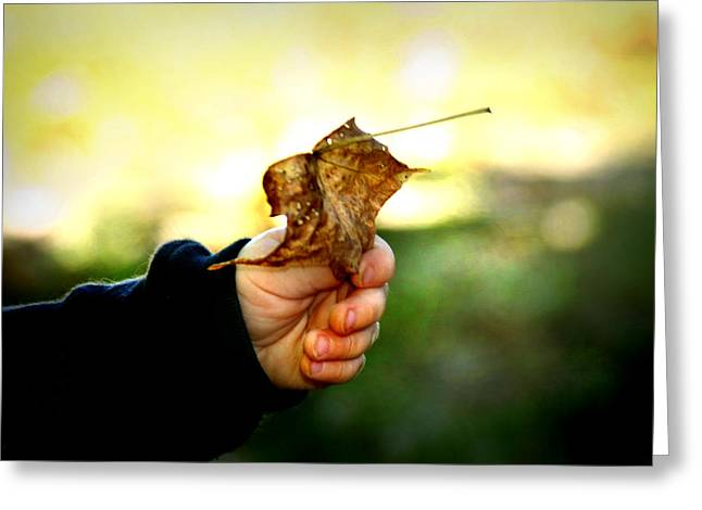 Autumn in Hand Greeting Card by Kelly Hazel