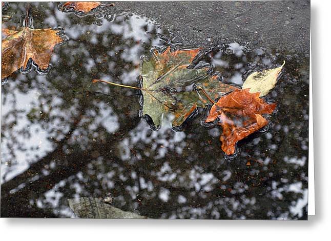 Reflection In Water Greeting Cards - Autumn in New York City Greeting Card by Chris Ann Wiggins