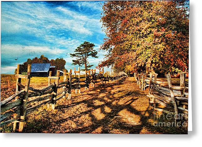 Seasonal Prints Rural Prints Greeting Cards - Autumn in the Gap Greeting Card by Lianne Schneider