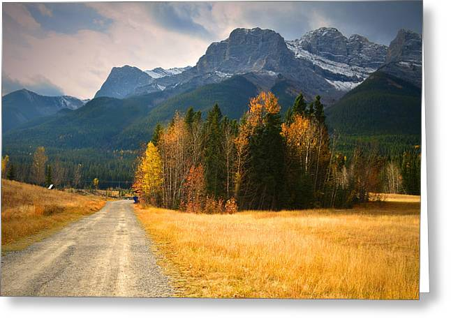Mountain Road Greeting Cards - Autumn in the Rockies Greeting Card by Tara Turner