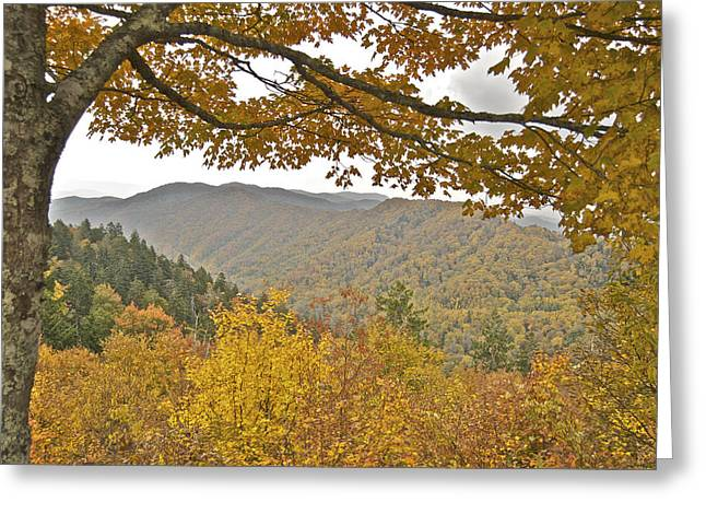 Peychich Greeting Cards - Autumn in the Smokies Greeting Card by Michael Peychich
