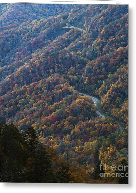 Mountain Road Greeting Cards - Autumn in the Smoky Mountains Greeting Card by Dennis Hedberg