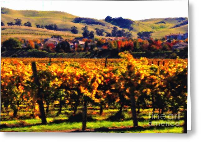 California Vineyard Greeting Cards - Autumn in the Valley 2 - Digital Painting Greeting Card by Carol Groenen