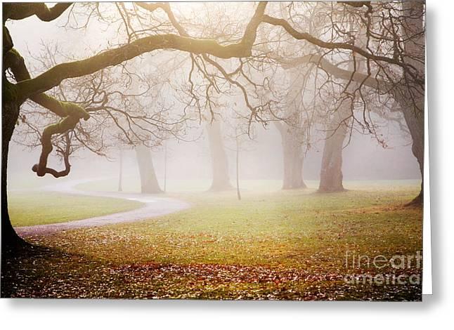 Peaceful Scene Greeting Cards - Autumn Greeting Card by Kati Molin