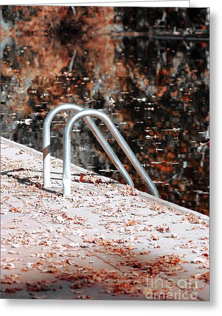 Swim Ladder Greeting Cards - Autumn Ladder Greeting Card by David Taylor