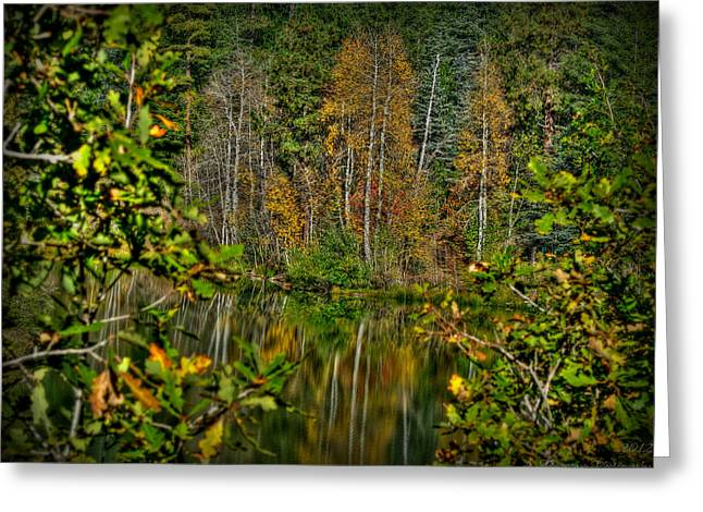 Prescott Greeting Cards - Autumn Lake HDR Greeting Card by Aaron Burrows