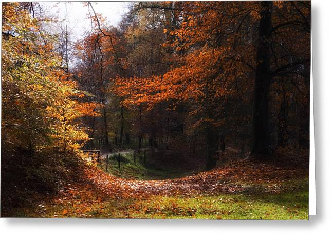 Nature Poster Greeting Cards - Autumn Landscape Greeting Card by Artecco Fine Art Photography