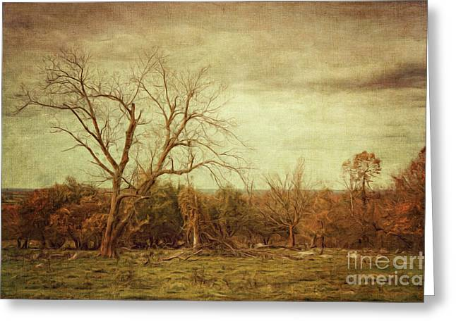 Autumn Scenes Greeting Cards - Autumn landscape/Digital Painting  Greeting Card by Sandra Cunningham