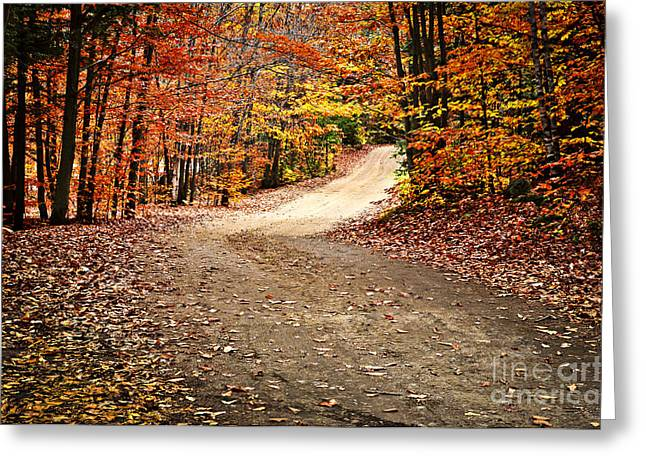 Ashes Greeting Cards - Autumn landscape with a path Greeting Card by Elena Elisseeva