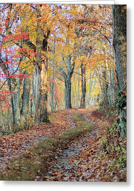Autumn Lane Greeting Card by Heavens View Photography