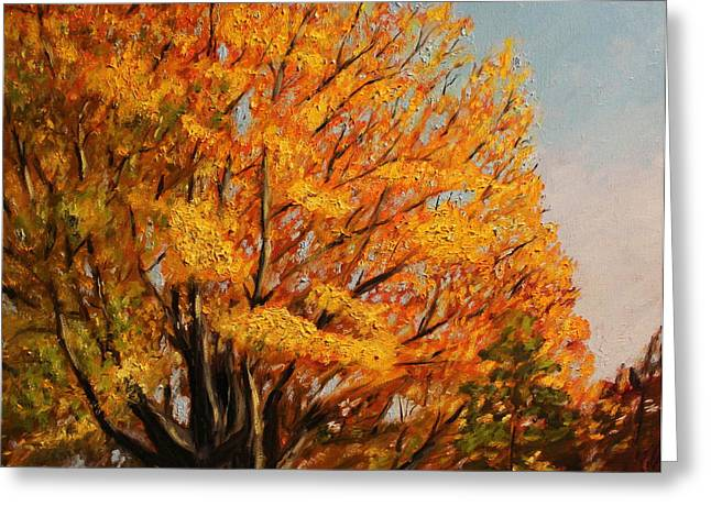 Autumn Leaves at High Cliff Greeting Card by Daniel W Green