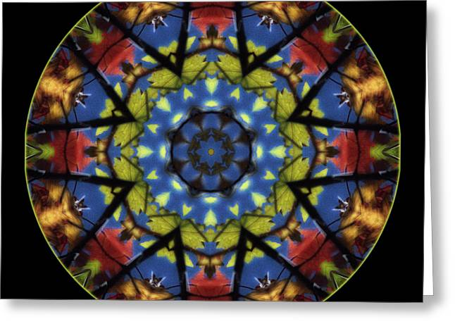 Autumn Mandala Greeting Cards - Autumn Leaves Reflection Mandala Greeting Card by Janeen Wassink Searles