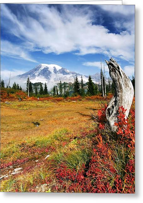 Mt. Rainier Greeting Cards - Autumn Majesty Greeting Card by Mike  Dawson