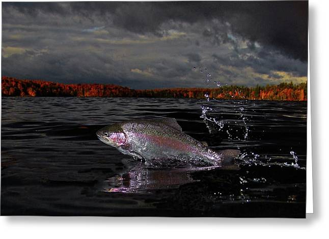 Fly Fishing Print Greeting Cards - Autumn Morn Greeting Card by Brian Pelkey