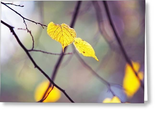 Autumn Nostalgie Greeting Card by Jenny Rainbow