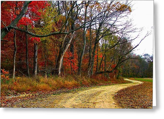 Autumn on Bottomland Road Greeting Card by Julie Dant