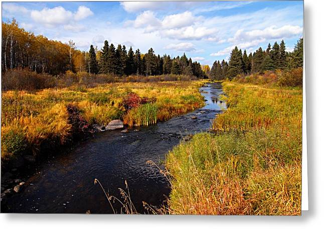Lhr Images Greeting Cards - Autumn on Jackfish Creek Greeting Card by Larry Ricker