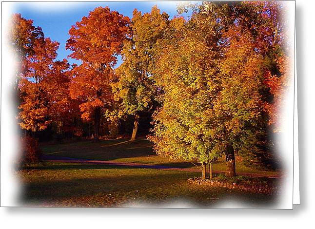 Photos Of Autumn Digital Greeting Cards - Autumn on Swansons Path Greeting Card by Liz Evensen
