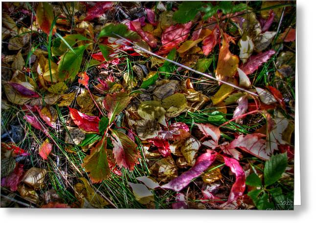 Prescott Greeting Cards - Autumn Pastels Greeting Card by Aaron Burrows
