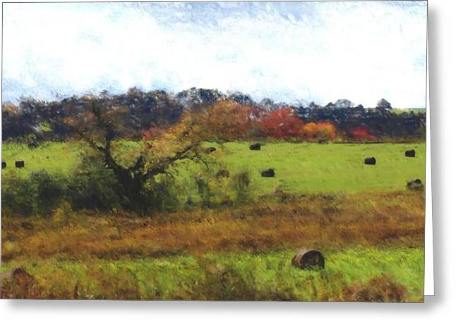 Digital Photographs Greeting Cards - Autumn Pasture Greeting Card by David Lane