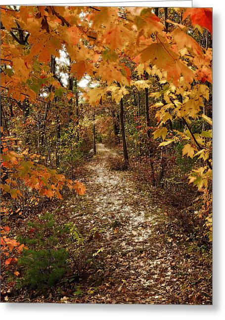 Abstract Water And Fall Leaves Greeting Cards - Autumn Path Greeting Card by Raymond Earley