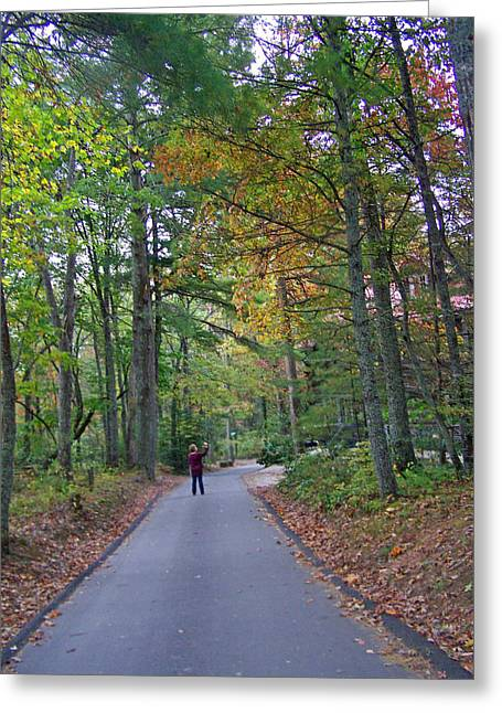 Patricia Taylor Greeting Cards - Autumn Photograph Greeting Card by Patricia Taylor