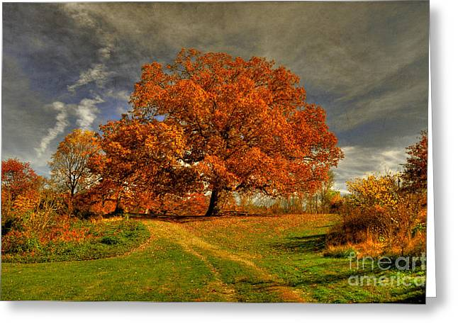Landscape. Scenic Digital Art Greeting Cards - Autumn Picnic on the Hill Greeting Card by Lois Bryan