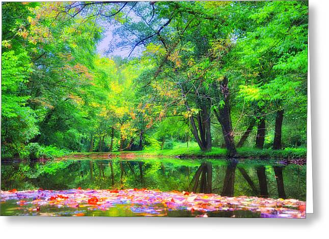 Stream Digital Art Greeting Cards - Autumn Pond in Gladwyne Greeting Card by Bill Cannon