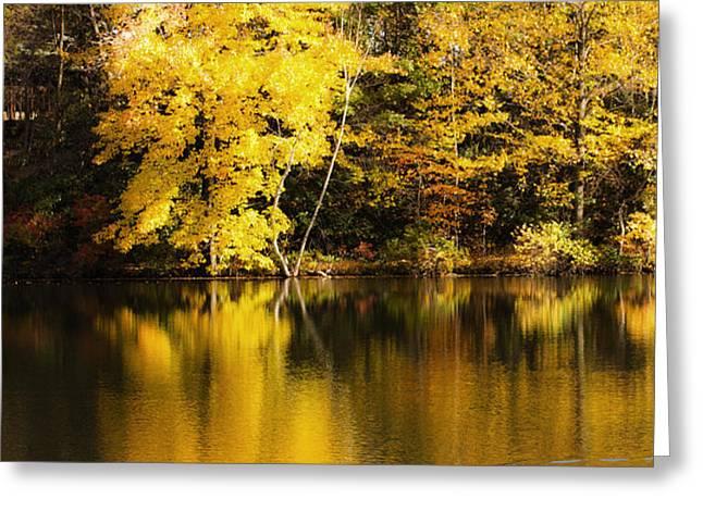 Autumn Pond Greeting Card by Leslie Leda