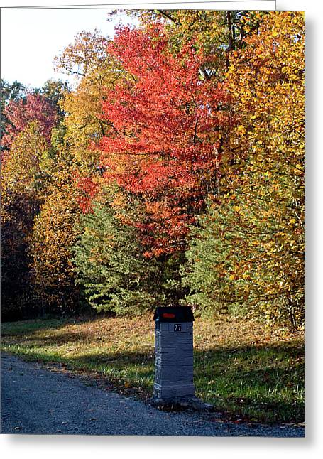 Dismal Greeting Cards - Autumn Post Greeting Card by Douglas Barnett