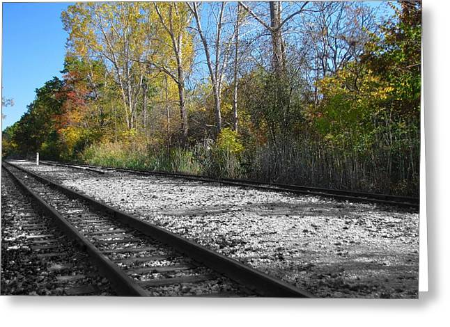 Rail Greeting Cards - Autumn Rail Line Greeting Card by Scott Hovind