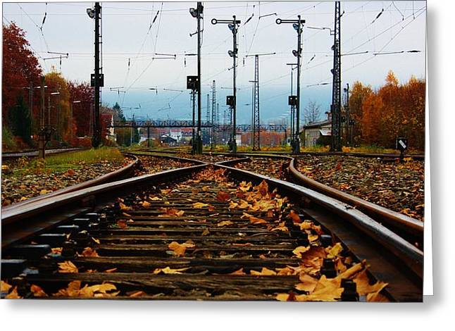 Herfst Greeting Cards - Autumn railway Greeting Card by Bram Voets