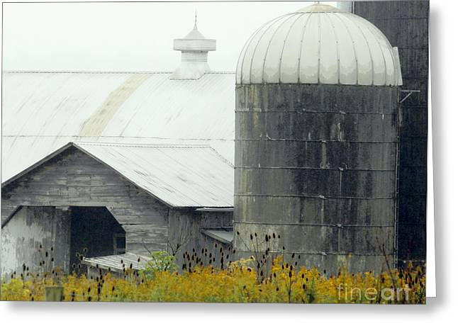 Crawford County Greeting Cards - Autumn Rain Greeting Card by Joe Jake Pratt