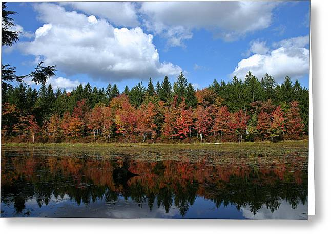 Leaf Peepers Greeting Cards - Autumn Reflection Greeting Card by David Rucker