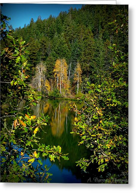 Prescott Greeting Cards - Autumn Reflections Greeting Card by Aaron Burrows