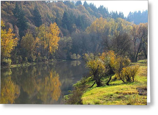 Wildlife Refuge. Greeting Cards - Autumn Reflections Greeting Card by Angie Vogel